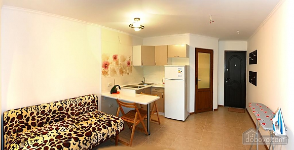 Apartment in Truskavets, Monolocale (57119), 002