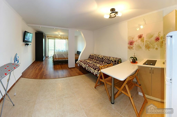 Apartment in Truskavets, Monolocale (57119), 003