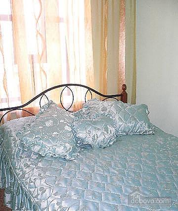 Квартира в центре, 1-комнатная (76343), 001