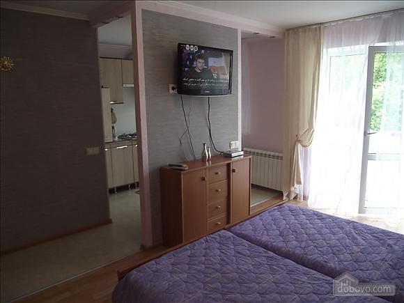 Уютная квартира, 1-комнатная (68297), 002