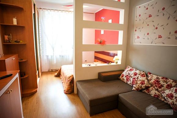 Квартира полулюкс в центре, 1-комнатная (31610), 001