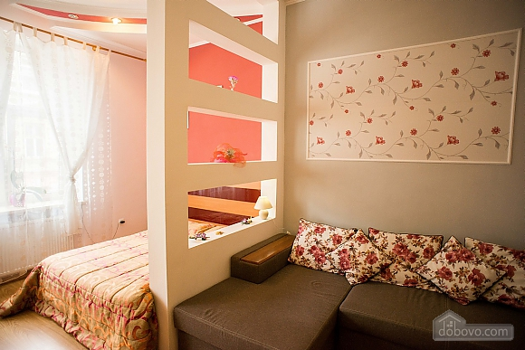 Квартира полулюкс в центре, 1-комнатная (31610), 012