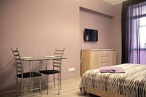 Мини гостиница на Позняках, 1-комнатная, 002