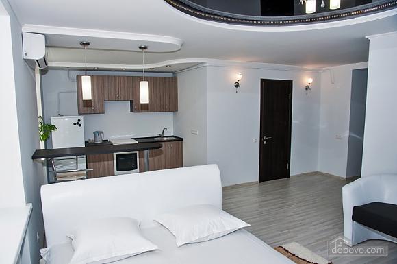 Квартира класса люкс в ЮЗР, 1-комнатная (50356), 004
