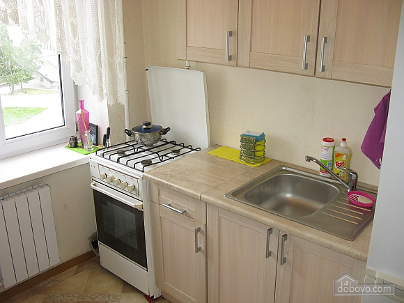 Modern apartment near the Metro Palace Ukraine, Monolocale (88874), 006