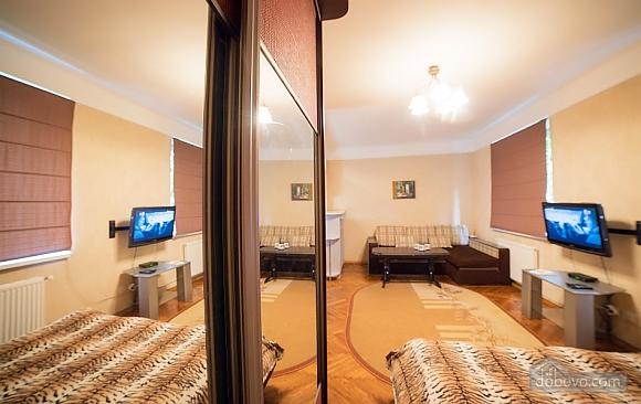 Квартира в центре, 1-комнатная (17522), 004