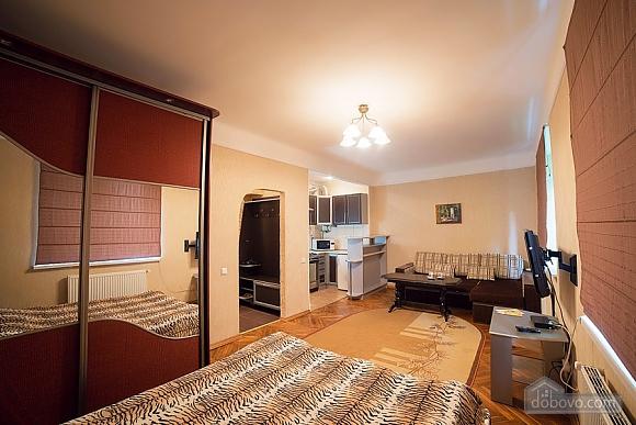 Квартира в центре, 1-комнатная (17522), 006