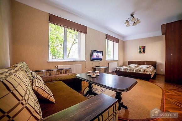 Квартира в центре, 1-комнатная (17522), 001