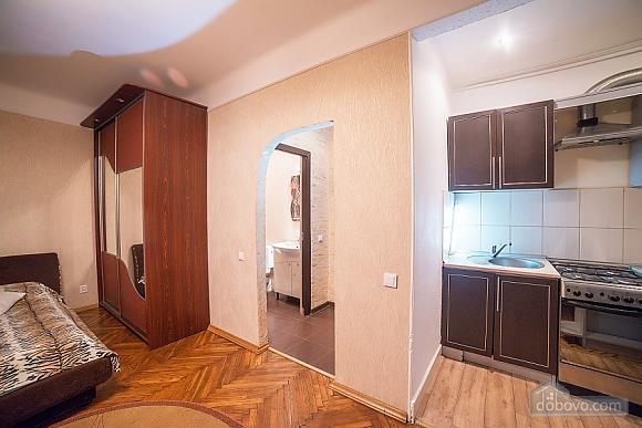 Квартира в центре, 1-комнатная (17522), 014