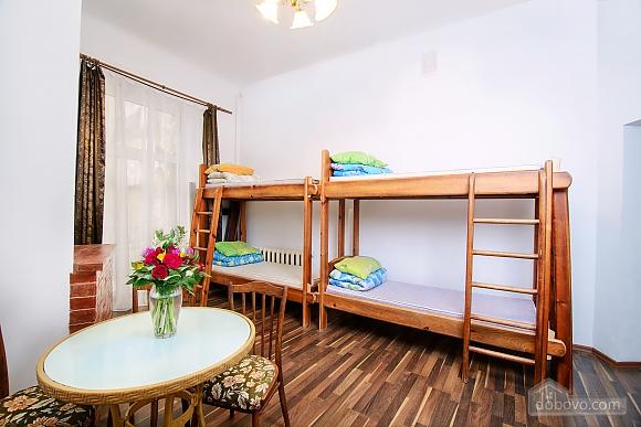 Квартира на вулиці Друкарській, 2-кімнатна (66261), 001
