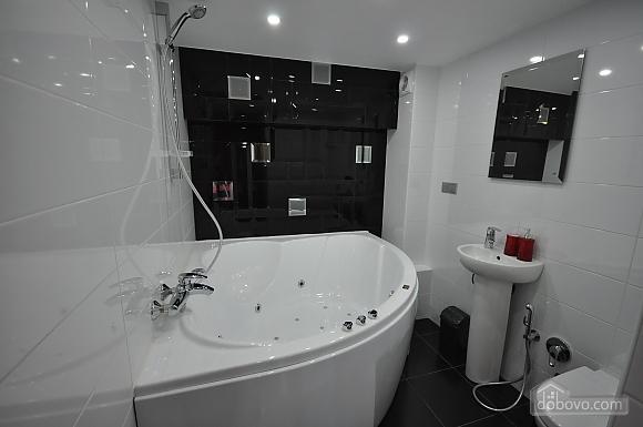 Роскошные двухэтажные апартаменты, 3х-комнатная (26314), 025
