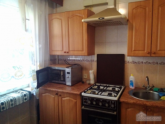 Apartment near the park, One Bedroom (16584), 004