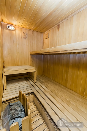 Apartment with sauna, Zweizimmerwohnung (24490), 009