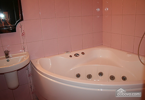 Beautiful apartment in 15 minutes from KyivExpoPlaza, One Bedroom (79925), 005