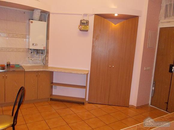 Квартира поряд із проспектом Свободи, 1-кімнатна (52839), 009