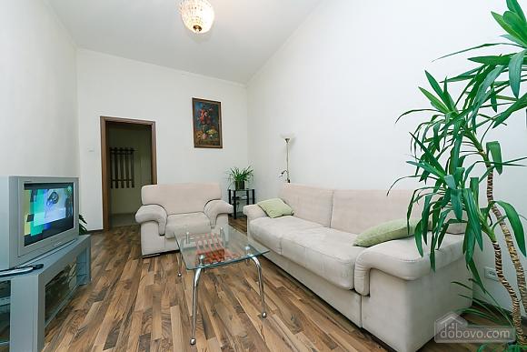 Spacious apartment, Zweizimmerwohnung (13906), 001