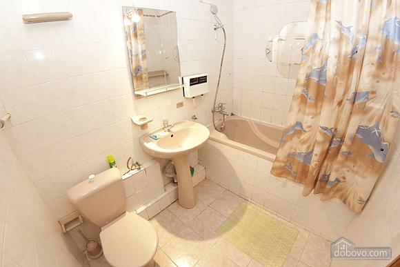 Nice apartment, Studio (65113), 008