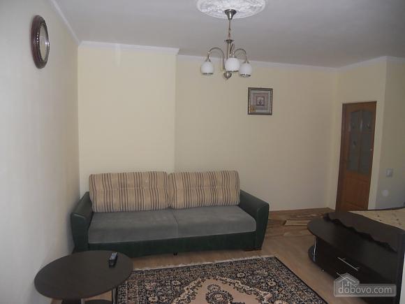 VIP apartment in the city center, Studio (73562), 001