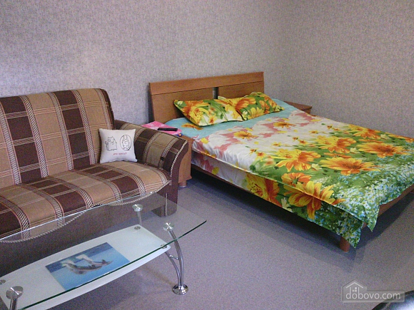 Apartment with private entrance and autonomous heating, Studio (48399), 004