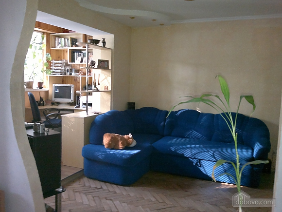 The apartment is near the park Kyoto, Studio (59308), 002