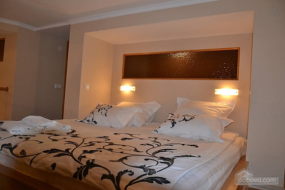 Duplex apartment on Bessarabka, Deux chambres (23774), 007