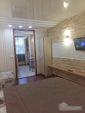 Stylish apartment in the city center, Studio (20346), 004