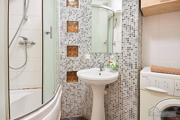 Beautiful apartment on Klovskaya, Una Camera (60623), 012