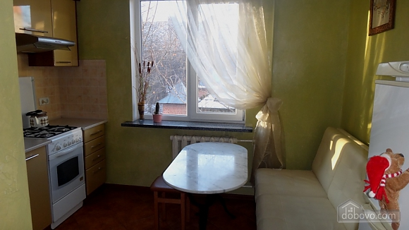 Apartment near the old bus station, Studio (44588), 003