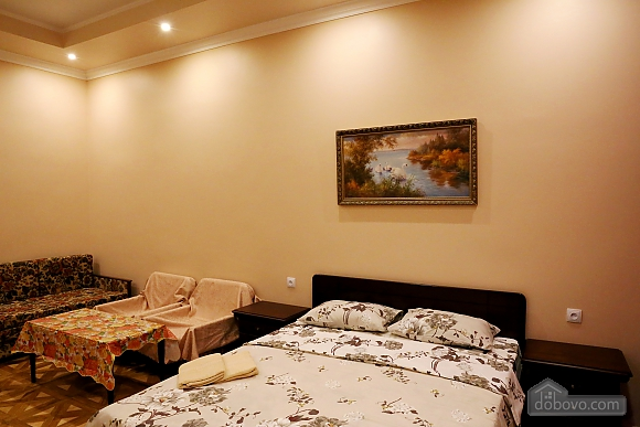 Comfortable apartment with WI-FI, Studio (34329), 002
