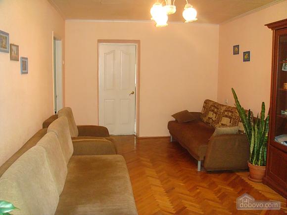 Большая квартира в центре, 3х-комнатная (95365), 001