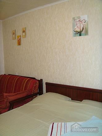 Большая квартира в центре, 3х-комнатная (95365), 002