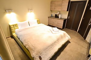 Luxury apartment at Pushkinska, Monolocale, 001