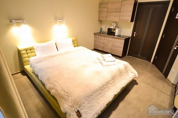 Luxury apartment at Pushkinska, Studio (60904), 001