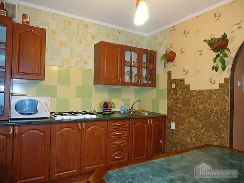 Cozy large apartment, Vierzimmerwohnung (67909), 007