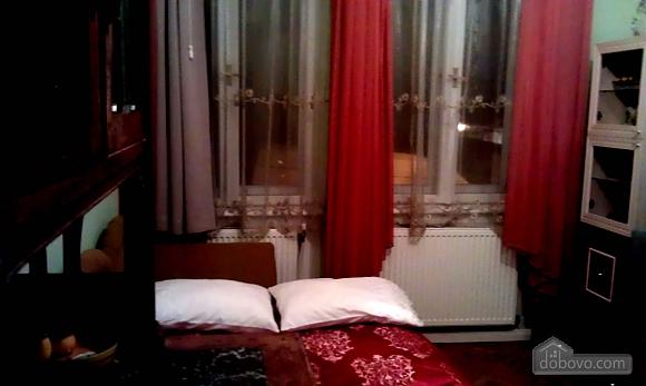 Apartment in 5 minutes from Opera theatre, Studio (68370), 002