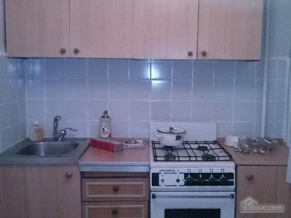 Квартира возле парка Климова, 1-комнатная (47636), 002