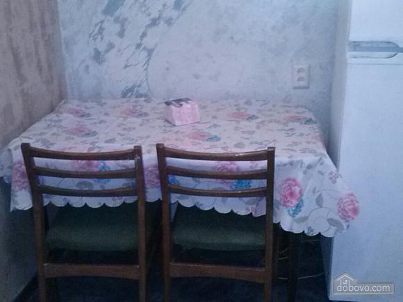 Квартира возле парка Климова, 1-комнатная (47636), 003