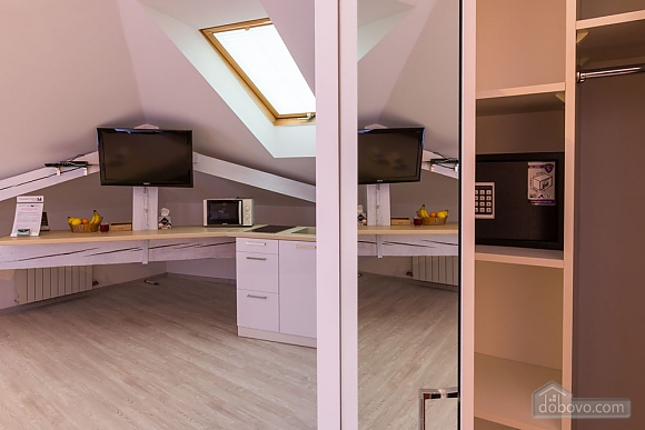 Apartments in the enter mansard studio, Studio (58292), 010