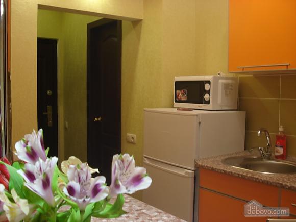 Квартира возле Южного Вокзала, 1-комнатная (94914), 006