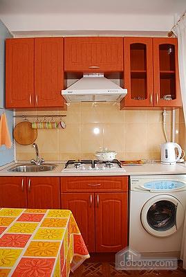 Comfortable apartment, Monolocale (48300), 003