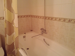 Spacious and comfortable apartment, One Bedroom, 005