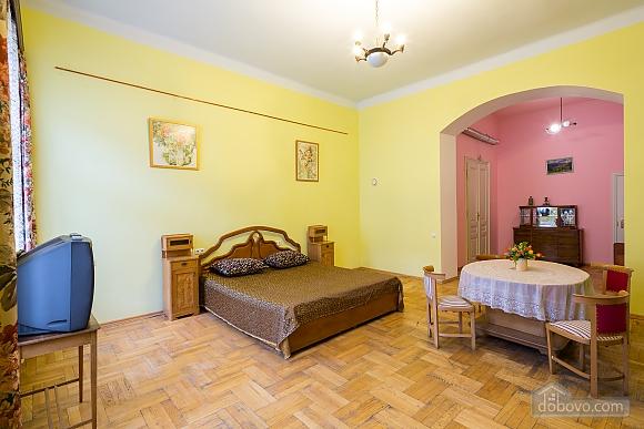 Comfortable apartment in the city center, Studio (26460), 002