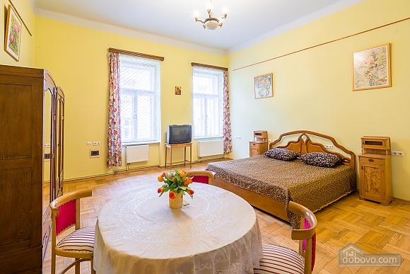 Comfortable apartment in the city center, Studio (26460), 001