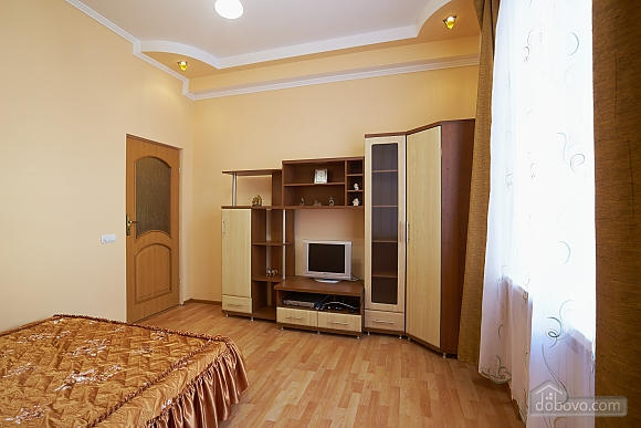 Comfortable apartment in the center of Lviv, Studio (94878), 002