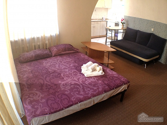 Studio apartment near Kontraktova metro station, Monolocale (75541), 001