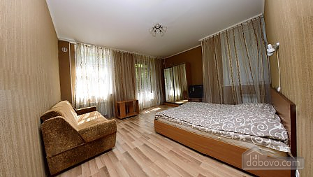 Apartment with beautiful furniture, Monolocale (94177), 001