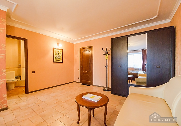 Classic one-room apartment with separate kitchen , Monolocale (14408), 008