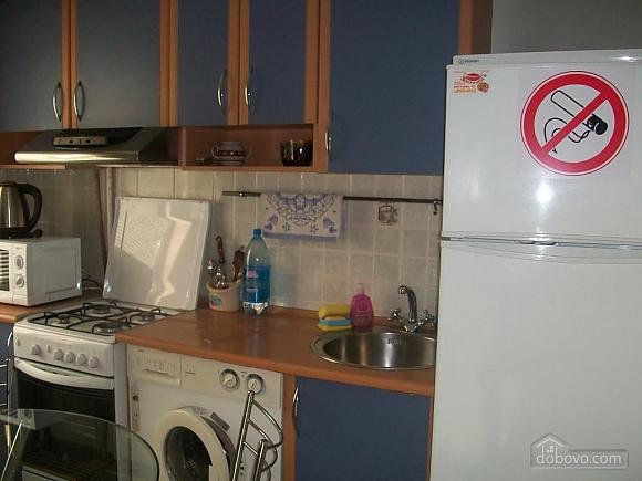 Квартира люкс-класу в центрі міста, 1-кімнатна (88910), 029