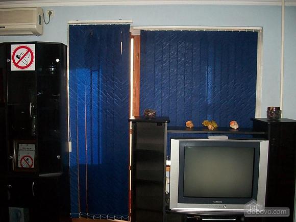Квартира люкс-класу в центрі міста, 1-кімнатна (88910), 033