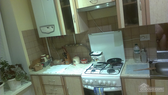Квартира со всеми удобствами, 1-комнатная (33916), 002